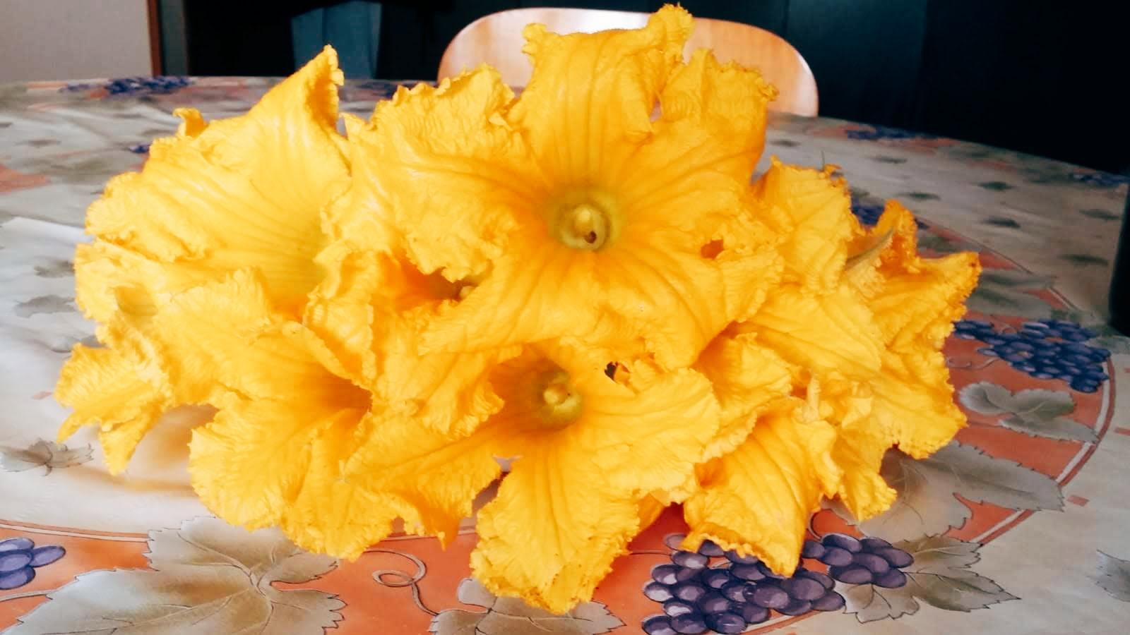 jadalne kwiaty cukinii przepis